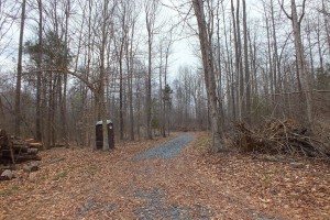 New road, now gluten-free!